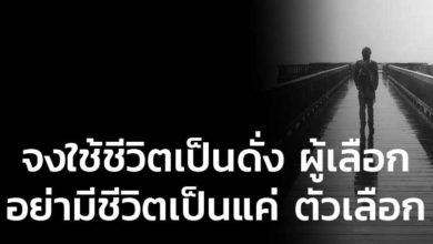 Photo of จงใช้ชีวิตเป็นดั่ง ผู้เลือก อย่ามีชีวิตเป็นแค่ ตัวเลือก
